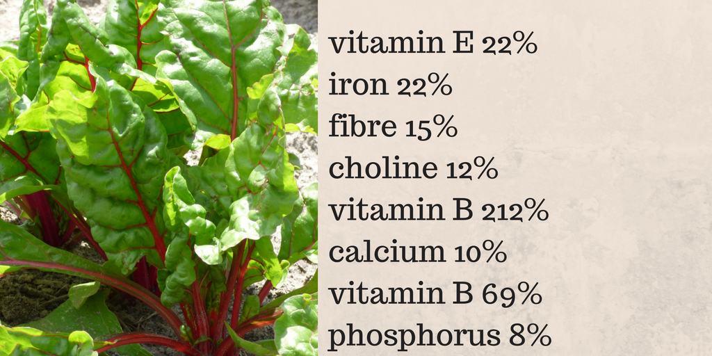 Super Benefits Of Silver Beet Or Swiss Chard Warmly Nourished